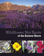 Wildflower Hot Spots of the Eastern Sierra cover.