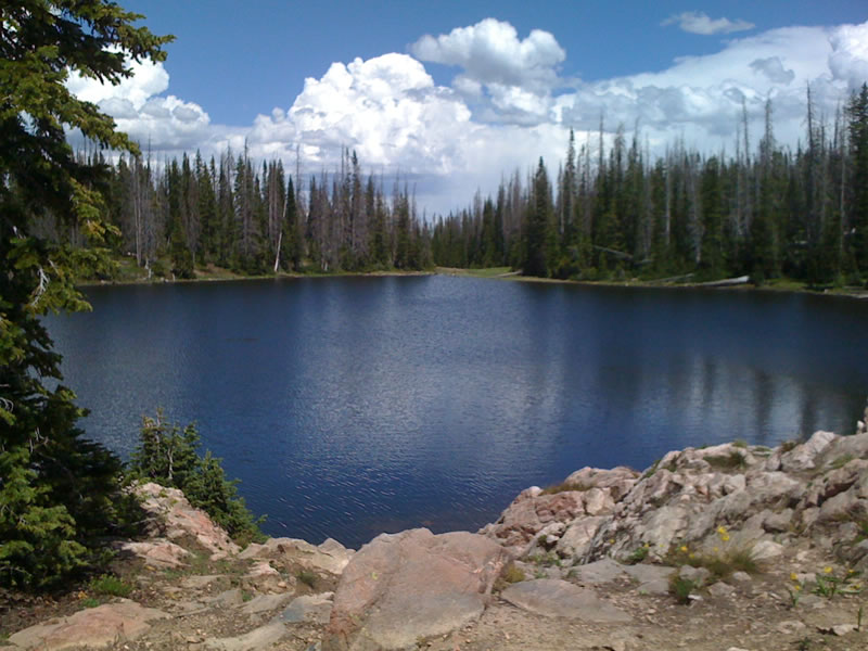 Buffalo pass for Best places to fish in colorado