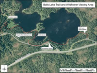 Aerial photo map of the Balls Lake Trail and Wildflower Viewing Area.