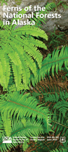 Ferns of the National Forests in Alaska brochure cover.