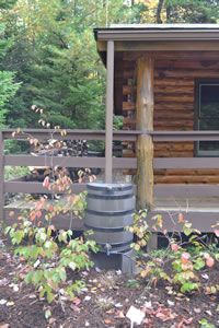 Rain barrel irrigation system at Lincoln Woods.