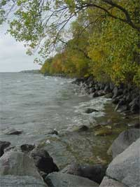 the shoreline at Stony Point.