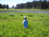View of a child standing in Bear Basin.