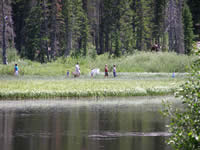 A family walking along an interpretive trail at Silver Lake.