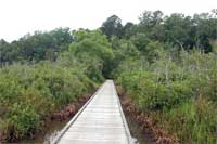 boardwalk across upper end of Choctaw Lake.