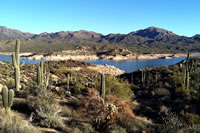Bartlett Reservoir and its surrounding saguaro (<em>Carnegiea gigantea</em>) studded landscape.