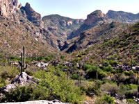 View as you look up Finger Rock Canyon.