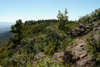 View of Verde Valley